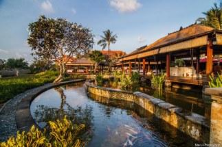 Fish Pond - AYANA Hotel, Bali